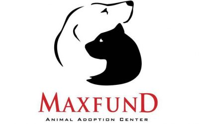KARE Donation to MaxFund Animal Adoption Center